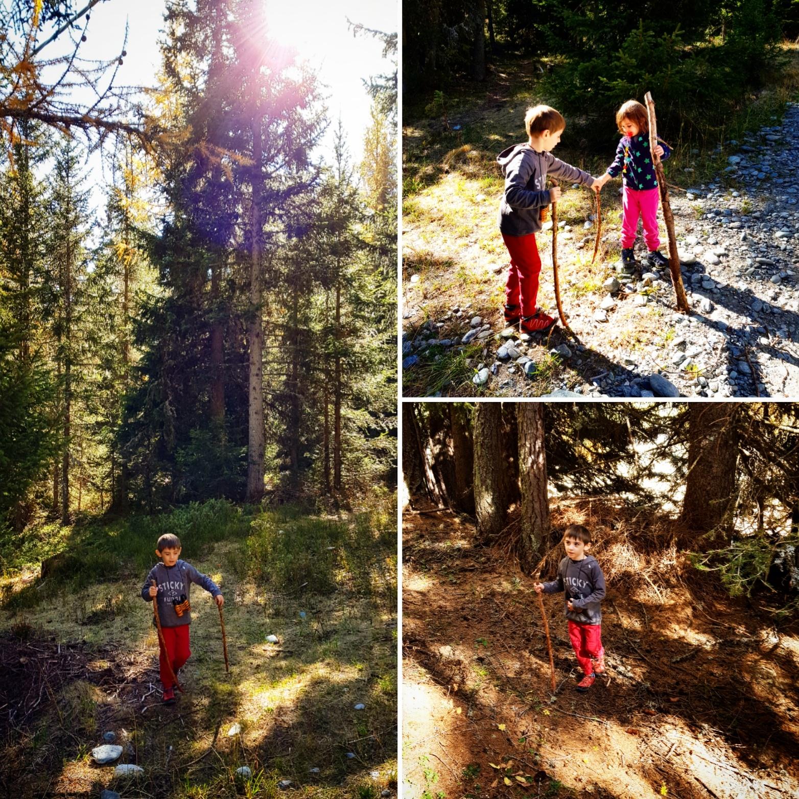bambini-ne-bosco