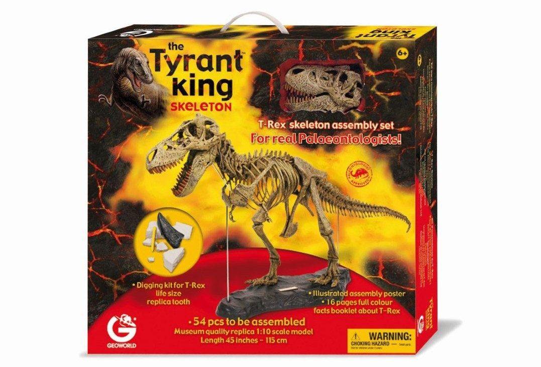 scheletro-di-dinosauro-da-costruire
