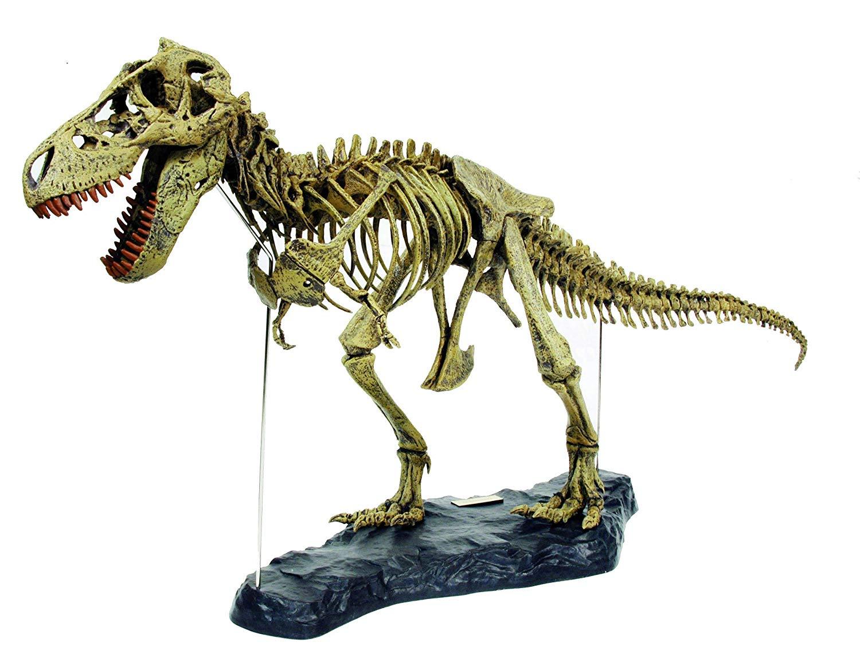 scheletro-dinosauro-giocattolo